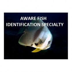 AWARE Fish Identification...